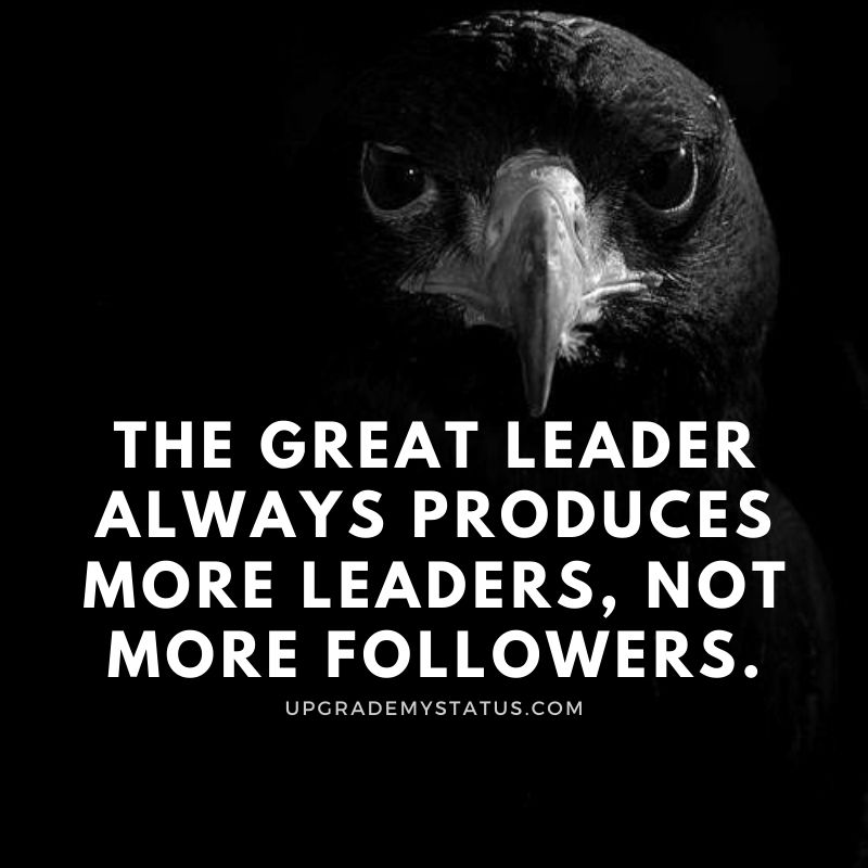 an image of eagle with black background with motivational status in English written on it