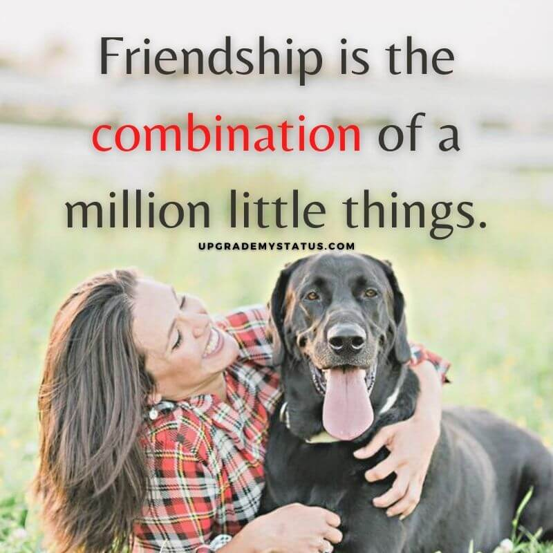 image of girl with his dog over it a friendship status for whatsapp is written